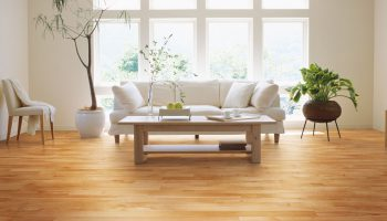 living-room-yellow-birch-hardwood-flooring-natural-red-natural-ambiance-lauzon